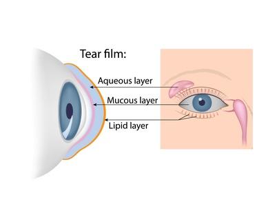 ¿Cómo se produce la lágrima?